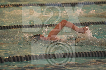 District-Swim-20191101-(024).jpg