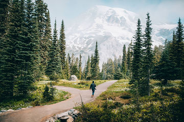 Summer-walk-Mt.Rainier-Washington-TheMandagies.jpg