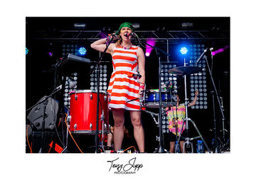 Blissfields14_TuNeYArds.jpg