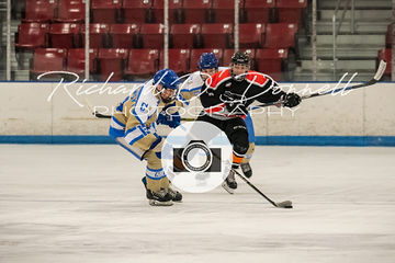 ehlp_philla.little.flyers-nj87's_02242019-500_2731.jpg
